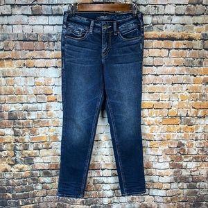 Silver Elyse Ankle Slim Jeans